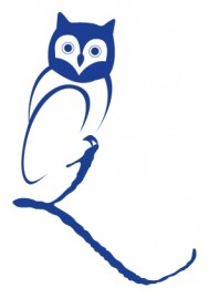 Owl in blueRGB